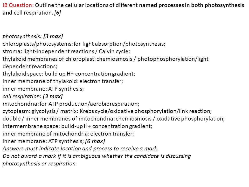 IB Question: Outline the cellular locations of different named processes in both photosynthesis and cell respiration. [6]